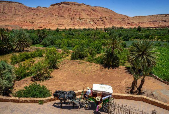 Calèche Ouarzazate