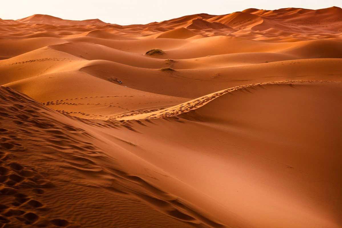 Désert du Maroc