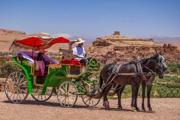 calèche hotel ouarzazate