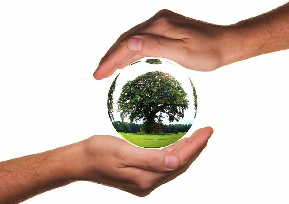 Eco Trail pour l'environnement