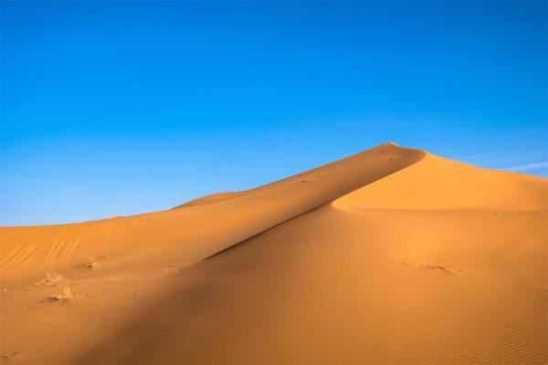 surf Sahara
