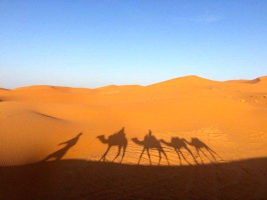 danger à éviter dans le désert de sahara